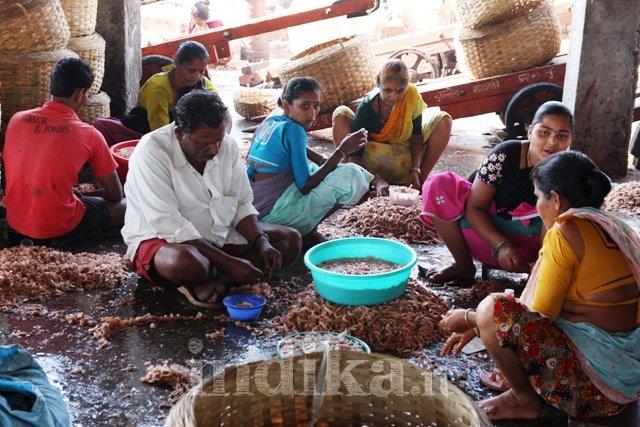 mumbai-porto-pescatori-7