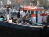 mumbai-porto-pescatori-8