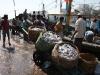 mumbai-porto-pescatori-9