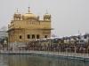 Tempio d\'Oro di Amritsar