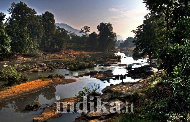 Orissa centrale, un suggestivo tratto di giungla - © F. Biancifiori