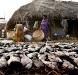 Orissa, villaggio di pescatori - © F. Biancifiori