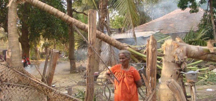 Sri Lanka, una mattanza senza tregua. Migliaia di vittime tra i civili e a nulla valgono gli appelli internazionali.